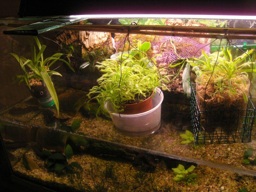 recycler aquarium vide